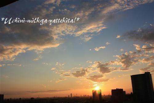 IMG_1504_RR.jpg