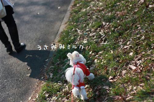 IMG_8830_R.jpg
