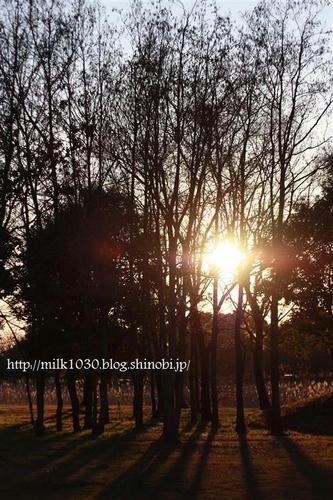 IMG_9934_R.jpg