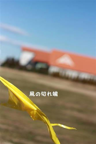 IMG_0380_R.jpg