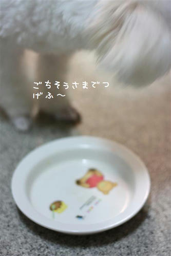 IMG_1015_R.jpg