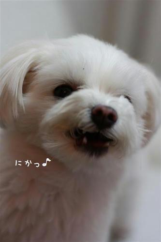IMG_3875_R.jpg
