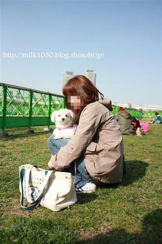 IMG_4413_R.jpg
