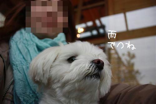 IMG_8647_R.jpg