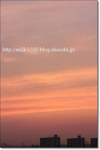 IMG_2485_R.jpg