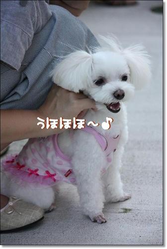 IMG_3894_R.jpg