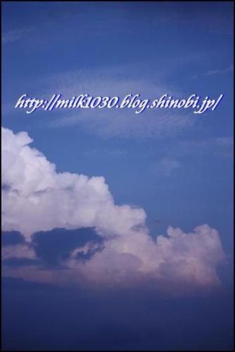 IMG_4168_R.jpg