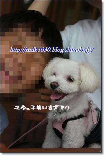 IMG_4215_R.jpg