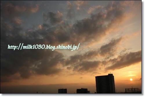 IMG_4402_R.jpg