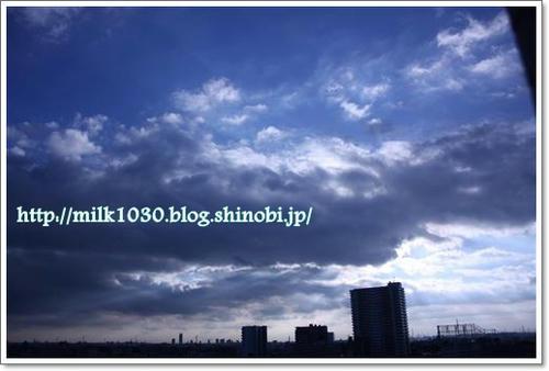 IMG_4411_R.jpg