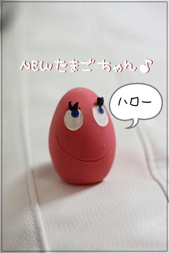 IMG_4481_R.jpg