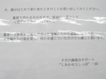 P1030156_025.JPG