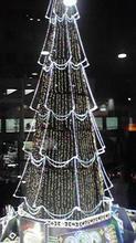 umeda_tree.jpg