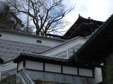 tobishima3-2.jpg