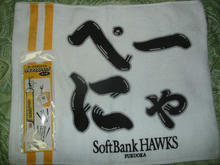 hawks121008-3.jpg