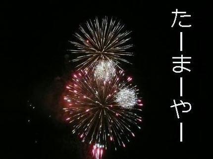mini_049.jpg