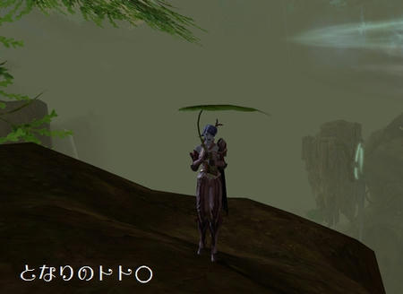 a008.jpg