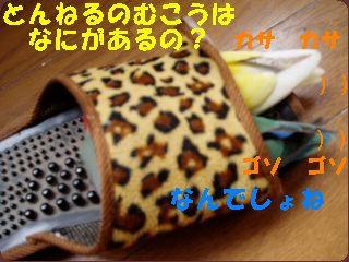 P5140050.jpg