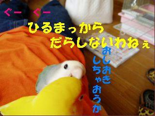 P5280038.jpg