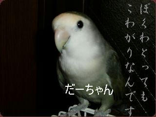 P7310050.jpg