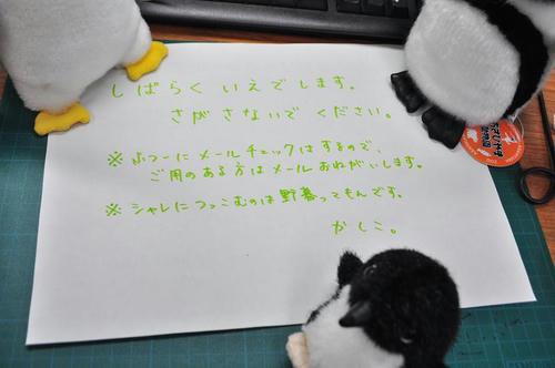 DSC_0030_s.JPG