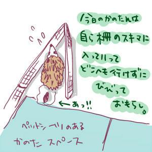 106-1.jpg