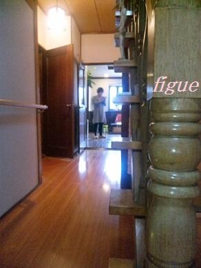 figue6.jpg