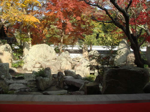 kouyou2009-2.jpg