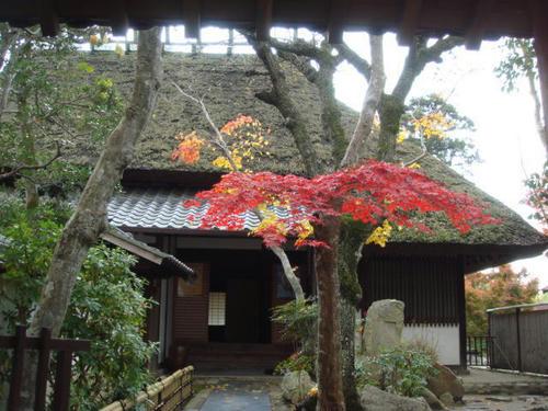kouyou2009-4.jpg