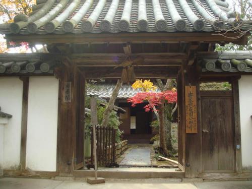 kouyou2009-5.jpg
