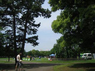 hiratsukapark.jpg