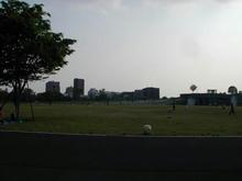 昭和記念公園 ゆめひろば