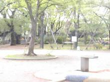 桜堤団地中央公園