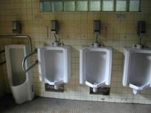 神代植物園分園 グリーンギャラリートイレ