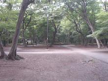 井の頭公園 公園西側