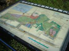 小金井公園