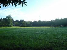小金井公園 中央広場