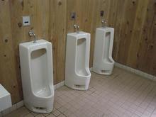 さいたま緑の森博物館案内所 外トイレ