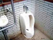 昭和記念公園 雲の海多目的トイレ