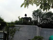 井の頭公園 公園南側ジブリ美術館