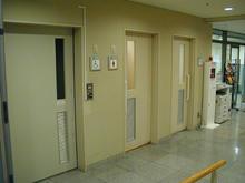 保谷こもれびホール  1階ロビートイレ