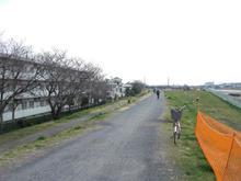 多摩川緑地公園トイレ