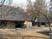 小金井公園 江戸東京たてもの園