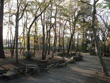 浴恩館公園