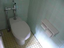 城山公園古民家園 外トイレ