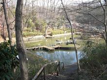 野山北公園 グランド広場池