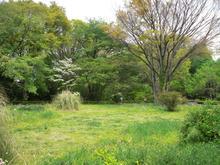 神代植物園分園 グリーンギャラリー