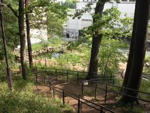 成城3丁目緑地