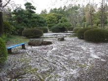 湖南菖蒲園