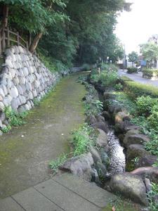 下の川緑地せせらぎ遊歩道公園